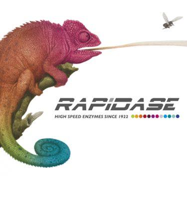 Rapidase Enzymes